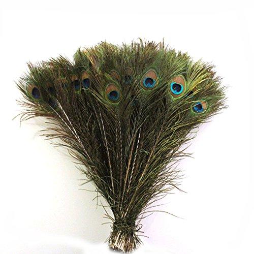Plumas de cola de pavo real autnticas, 25,4 a 30,4 cm, 50 unidades