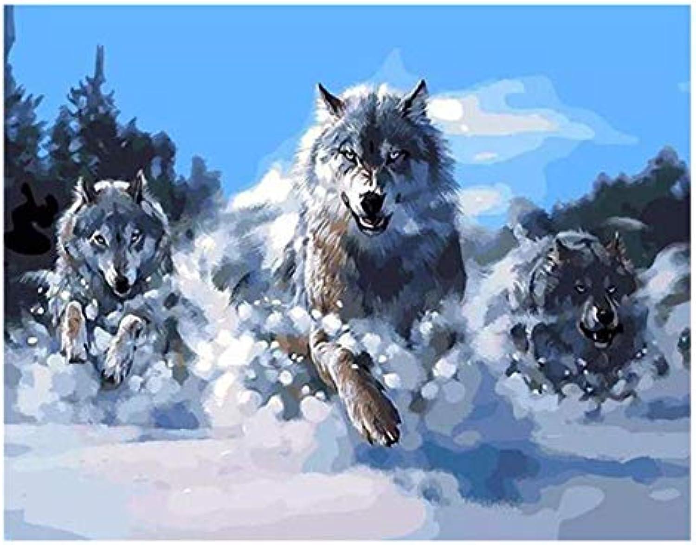 Superlucky Wolf Run DIY Malen Nach Zahlen Tierölgemälde Auf Leinwand Schnee Wald Cuadros Decoracion Acryl Wandkunstausgangsdekor Eingerahmt 40x50 cm B07L866BNM | Eine Große Vielfalt An Modelle 2019 Neue