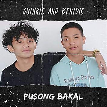 Pusong Bakal