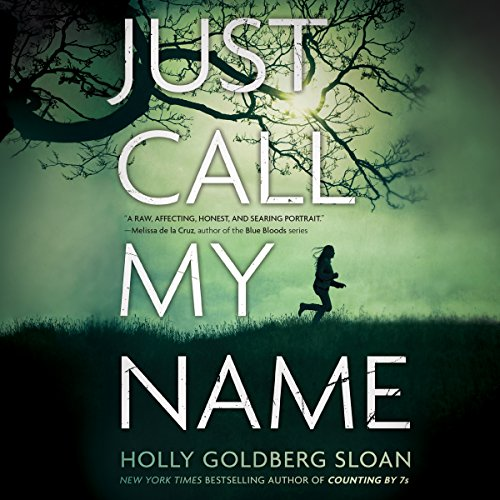 Just Call My Name audiobook cover art