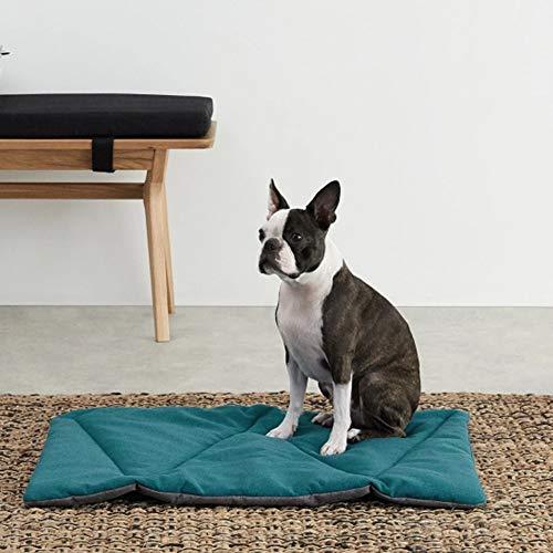 CtopoGo Hundedecke - Flauschig, Weich u.Für große u. Kleine Hunde o. Katzen - Hundematten/Hundekissen, Katzendecke (S (46x36x2 cm), Grün)
