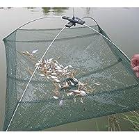 Favolook - Red de pesca con trampa plegable y sistema de inmersión para pescar peces pequeños, camarones y cangrejos