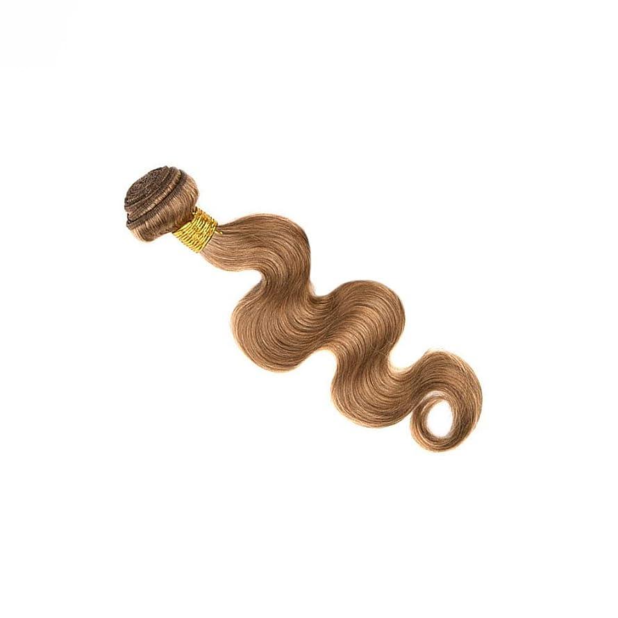 醜い切る一月Goodsok-jp ブラジル人毛織りバンドルボディウェーブナチュラルヘアエクステンション27#ブラウンカラー(100g、1バンドル) (色 : ブラウン, サイズ : 20 inch)