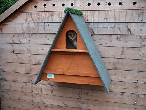 barn owl nest box (Golden Brown)