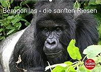 Berggorillas - die sanften Riesen (Wandkalender 2022 DIN A2 quer): Berggorillas in ihrem natuerlichen Lebensraum (Geburtstagskalender, 14 Seiten )