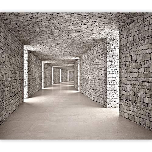 murando Fototapete 3D Tunnel 350x256 cm Vlies Tapeten Wandtapete XXL Moderne Wanddeko Design Wand Dekoration Wohnzimmer Schlafzimmer Büro Flur Mauer Ziegel Textur d-B-0332-a-a