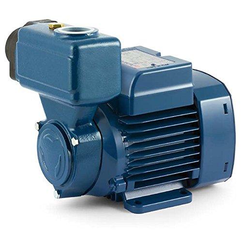 PKS M80, elektrische pomp, zelfaanzuigend, 1 pk, 220 V, waterpomp pedaolgordijn
