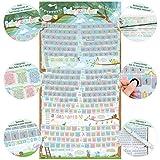 all Kids United Schwangerschaftskalender zum Rubbeln - Schwangerschafts-Tagebuch; Babykalender & Rubbel-Kalender - Schwangerschaftstagebuch führt Tag für Tag durch die Schwangerschaft