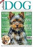 Edition Dog