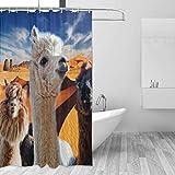Cortina de la Ducha Alpacas Desert Blue Sky FabricShower Curtain with 12 Polyresin Hooks,60x72 Inch Bathroom Decor Waterproof Polyester Multicolored