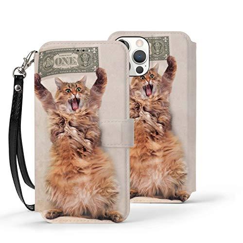 Ip12-6.1 Funda de cuero Flip Phone Wallet Cover a prueba de golpes divertido gato lanudo dinero protector con ranura para tarjeta titular Kickstand
