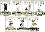 Coleção A Enciclopédia Ilustrada de Raças de Cães (7 volumes): Um guia visual de A a Z com 176 Raças para você conhecer e se encantar