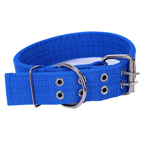 Cdycam Nylon Dog Adjustable Dog with 2-Rows Metal Buckle , Training Dog Collar with Double Metal D Ring Buckle ( L, Blue )