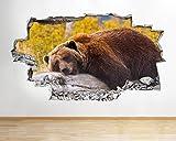 tekkdesigns B029Bär Forest Rock Tiere Sleep Kinder