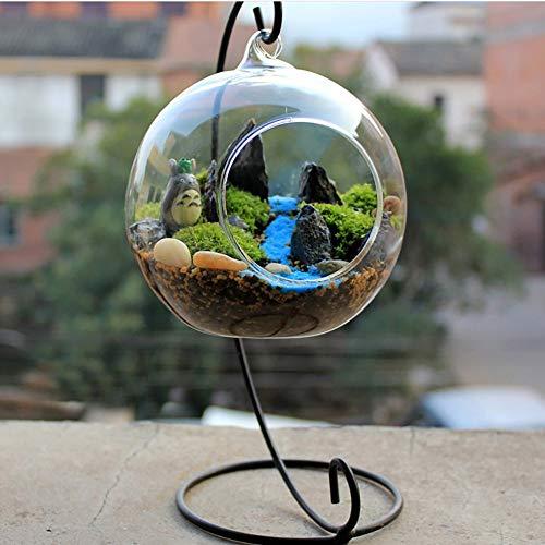 Creatieve transparante glazen bolvaas met ijzeren beugel, geschikt voor vetplanten, luchtplanten, kaarsen, klein en prachtig, eenvoudig en stijlvol, decoratief leven,L