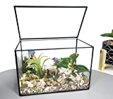 Ferrisland Glass Terrarium Mordern Geometric Succulent Terrarium for Tabletop Decor Box w/Lid-8.3'x5.5'x4.7'