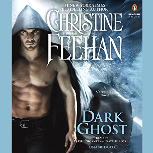 Dark Ghost audiobook cover art