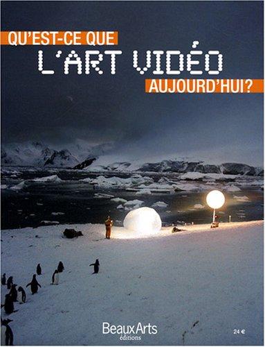 Qu'est-ce-que l'art vidéo aujourd'hui ?