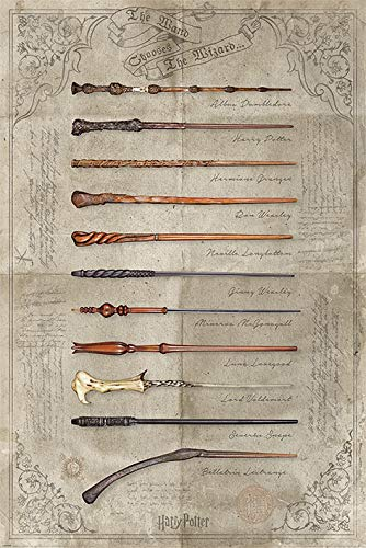 Wizarding World G874440 Harry Potter Poster Wand Chooses The Wizard, Mehrfarbig, 61 x 91.5 cm, 2 Einzelteil