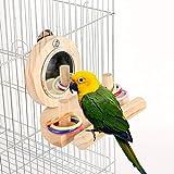 SASKATE Jaula de espejo para pájaros, juguete de anillo de color apilable, bola de masticar loro, juguete de cabeza