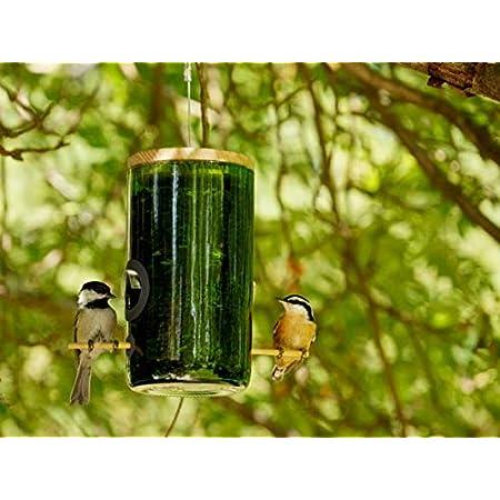 Botella De Vino Reciclada Comedero Para Pájaros Jardín Y Exteriores