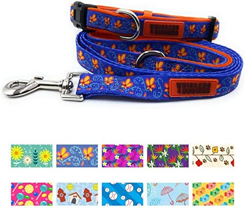 WHISKERS BUDDIES Dog Collar and Leash Set Adjustable Neoprene Lined Collar with Matching Leash product image