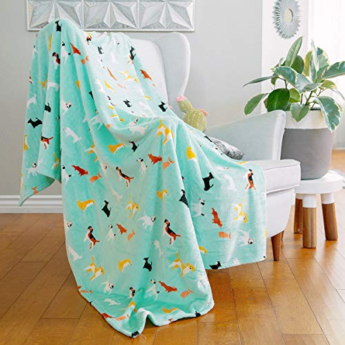 AVAFORT Velvet Plush Home Fleece Throw Blanket for Couch Sofa Bed, Warm Elegant Fuzzy Flannel Blanket for Kid Baby Adults or Pet, Lightweight Soft Cozy Warm Luxury Microfiber Blankets (Dog-Aqua Sky)