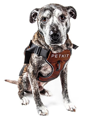 PETKIT 'AIR' Quad-Connecting Cushioned Chest Compression and Reflective Brethable Premium Safety Mesh Pet Dog Harness, Small, Orange and Black