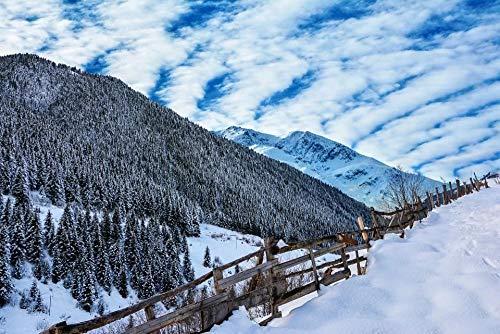 HQHff Nieve montaña Bosque Cielo Azul Picea Pendiente,Puzzles Adultos 1000 Piezas 75x50cm,3D Puzzles de Madera Adultos Regalo de Juguete Educativo para niños