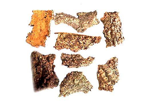 Generico Recibes 1 kg de corcho, corteza natural, varios tamaños, más 1 ramo de 40 papeles napolitanos escoba objetos para pesebre pastores San Gregorio Armeno artesanales Shepherds Crib