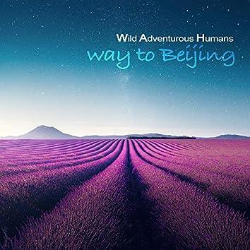 Way To Beijing