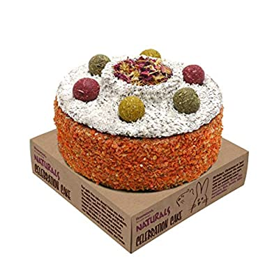 Rosewood Naturals Small Animal Treats Celebration Cake