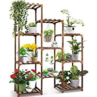 Cfmour 10 Tire Tall Large Wood Plant Shelf