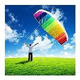 1yess Doble línea parafoil Kite Volando Herramientas línea Potencia Trenza Vela Kitesurf Arco Iris Juguetes al Aire Libre Deportes Playa weifang