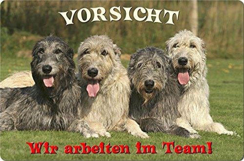 +++ Irischer WOLFHUND Irish Wolfshund - Metall WARNSCHILD Schild Hundeschild Sign - IRW 11 T16