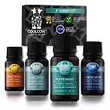 Coolcow Duftöl-Set für Diffusoren, 4 x 15 ml, 100% natürliche Aromatherapie für Zuhause, Energizing Aroma: Pfefferminze, Eukalyptus, Sweet Orange, Wacholderbeere ätherische Öle