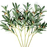 Faux Olive Branches for Vases [5pack, 27inch Length]...