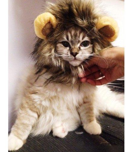 Stonges Haustier Kostüm Lion Mähne Perücke für Hund Katze Halloween Dress up mit Ohren