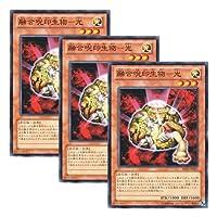 ★ 3枚セット ★遊戯王 日本語版 SD26-JP017 The Light - Hex-Sealed Fusion 融合呪印生物-光 (ノーマル)