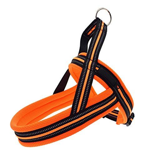 Coomir hondenharnas met riem, reflecterende halsband, verstelbaar, klein/middel/groot