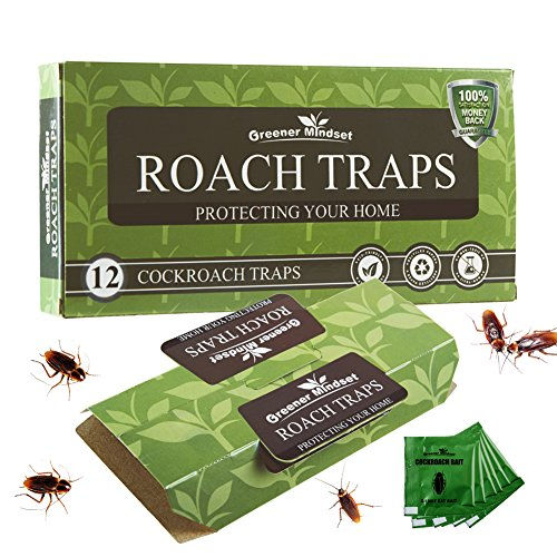 Greener Mindset 12 Pack Cockroach Traps with Bait Included - Premium Glue Trap - Eco-Friendly -...