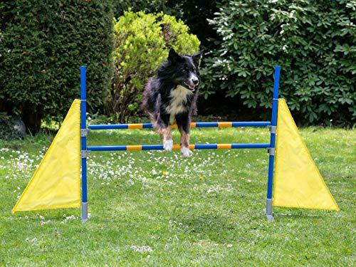 Procyon Profi Agility Hürde Hunde-Training-Set höhenverstellbar - FCI konform