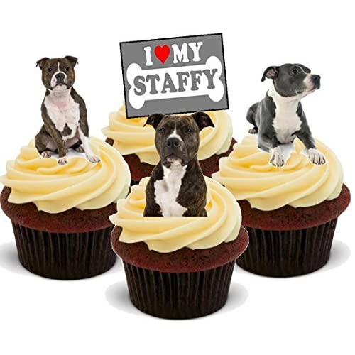 Staffordshire Terrier Dog Mix Staffy Dogs