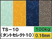 タントセレクト TS-10 100kg N-53 A4 10枚