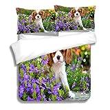 RLDSESS Puppy 3 Piece Twin Comforter Set,Cavalier King Charles Spaniel Puppy,3 Piece Bedding Set with 2 Pillow Shams
