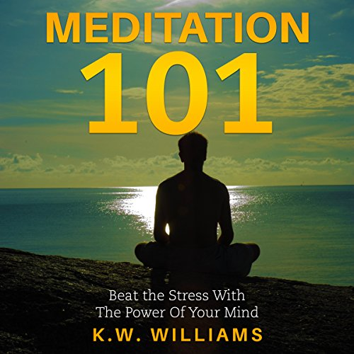 Meditation 101 audiobook cover art