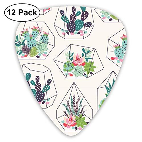 Gitaar Pick Vetplanten En Cactussen Textuur In Terrariums 12 Stuk Gitaar Paddle Set Gemaakt Van Milieubescherming ABS Materiaal, Geschikt voor Gitaren, Quads, Etc