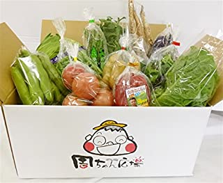 JA全農えひめ 周ちゃん広場『新鮮!野菜(季節によっては果物も!)詰め合わせ』(愛媛県産)