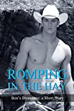 Romping in the Hay: Ben's Bromance - a Short Story (First Time Gay, Straight to Gay, Cowboy, M/M, Fr...