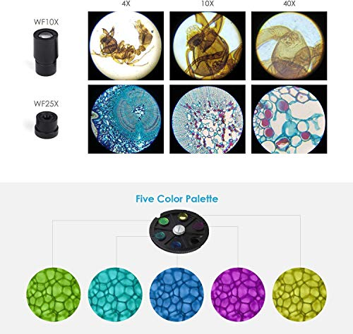 TELMU XSP-75 Mikroskop mit Smartphonehalter Erfahrungen & Preisvergleich